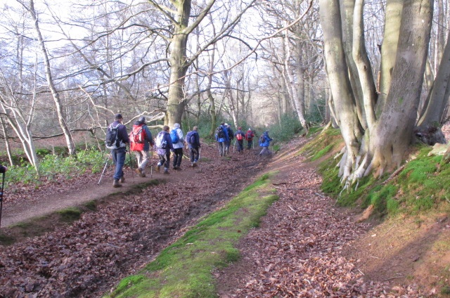 Godalming & Haslemere Ramblers